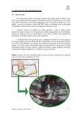 Informe anellament a Abrera 2010 0 - Ajuntament d'Abrera - Page 6