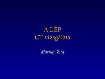 A LÉP CT-vizsgálata