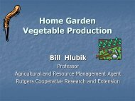 Vegetable Production - Mgmcnj.org