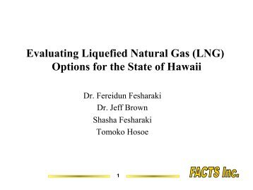 Evaluating Liquefied Natural Gas (LNG) Options for the State of ...