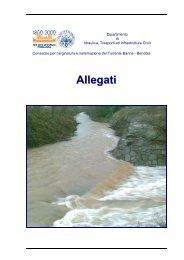 Allegati - idrologia@polito