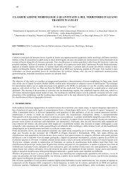 classificazione morfologica quantitativa del ... - idrologia@polito