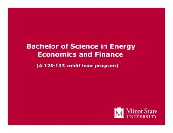 Bachelor of Science in Energy Economics and Finance