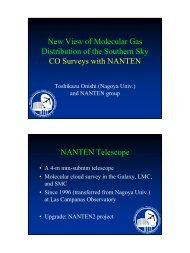 CO survey with NANTEN - VERA