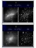 銀河団における矮小銀河問題 - VERA - Page 6