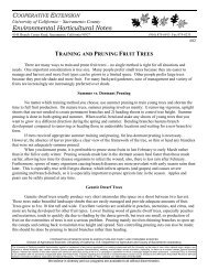training and pruning fruit trees - University of California Cooperative ...