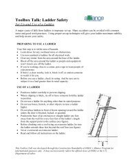Set Up and Use of a Ladder