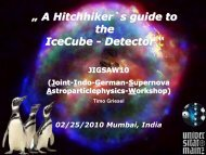 A Hitchhikers Guide through the IceCube Detector - Department of ...