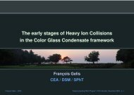 The early stages of Heavy Ion Collisions in the Color Glass ...