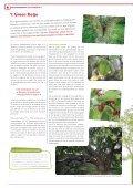 De Erfgoedkrant nr. 2 - Erfgoedcel Aalst - Page 4