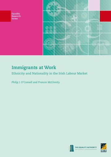 Immigrants at Work - Ethnicity and Nationality in ... - Equality Authority
