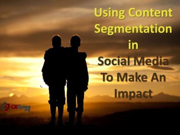 Using Content Segmentation in Social Media To Make An Impact