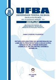Dissertação de Mestrado Final - TECLIM - Universidade Federal da ...