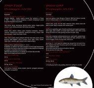 Opisy ryb - ZSG Nr 2