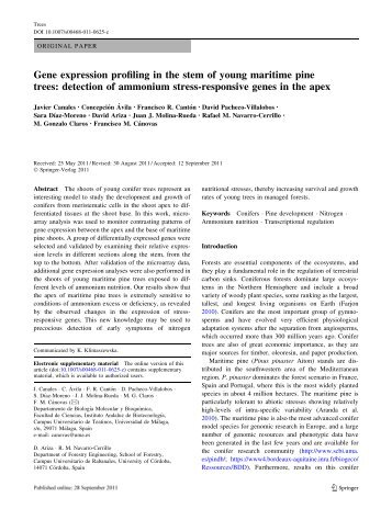 Gene expression profiling in the stem of young maritime pine trees ...