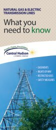 What You Need to Know About Natural Gas and Electric ...
