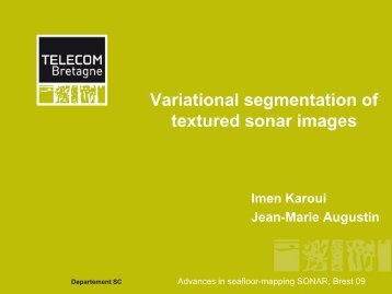 Variational segmentation of textured sonar images