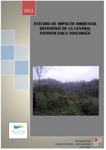 estudio de impacto ambiental preliminar para la central ... - Conelec