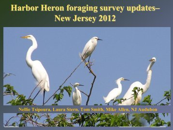 Tsipoura 2012 from the foraging study .pdf - New York-New Jersey ...
