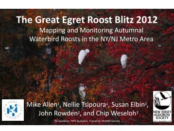 The Great Egret Roost Blitz 2012 v. 01-14 -2013.pdf