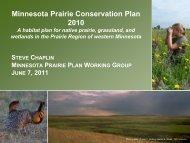 Minnesota Prairie Conservation Plan 2010 - Lessard-Sams Outdoor ...