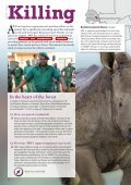 awf-2014-report - Page 6