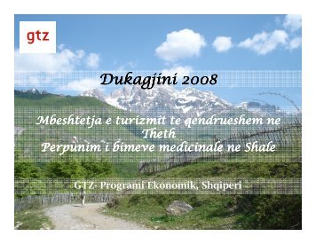 2. Promovimi i turizmit ne zonen e Dukagjinit, Thethi model zhvillimi