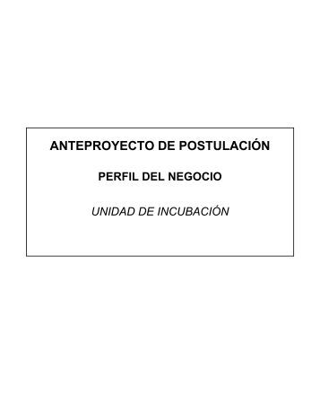 formulario Anteproyecto de Postulación - Municipalidad de Ñuñoa