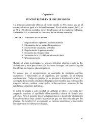 Capítulo 18 FUNCION RENAL EN EL ADULTO ... - Ecotropicos