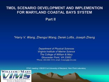 Wang - The Coastal Bays Program