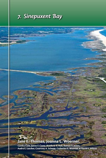 7. Sinepuxent Bay - The Coastal Bays Program