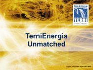TerniEnergia's Group Structure - IR Top