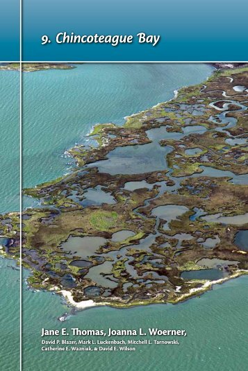 9. Chincoteague Bay - The Coastal Bays Program