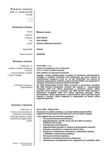 Modello Curriculum Vitae Europeo Editabile