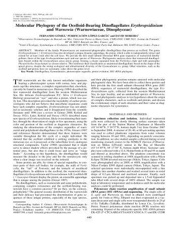 view phase theory the thermodynamics of heterogeneous equilibria