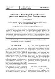 First records of the dinoflagellate genus Dicroerisma (Actiniscales, Dinophyceae) in the Mediterranean Sea