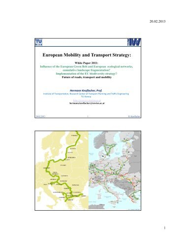 European Mobility and Transport Strategy: - GreenNet Project