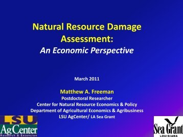 Natural Resource Damage Assessment: An Economic Perspective