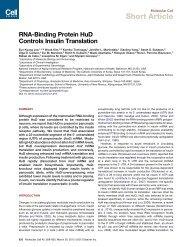 RNA-Binding Protein HuD Controls Insulin Translation