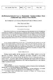 Raillietnemakritscheri sp. n. (Nematoda: Cosmocercidae) from ...