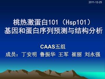 Hsp101 - abc