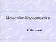 Phylogenetics tree construction methods - abc