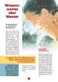 Dampfreiniger-Fibel - Dampfsauger - Seite 4