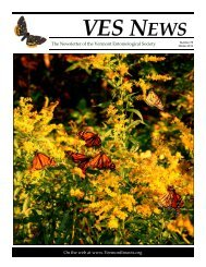 VES News - Winter 2012-2013 - Vermont Entomological Society