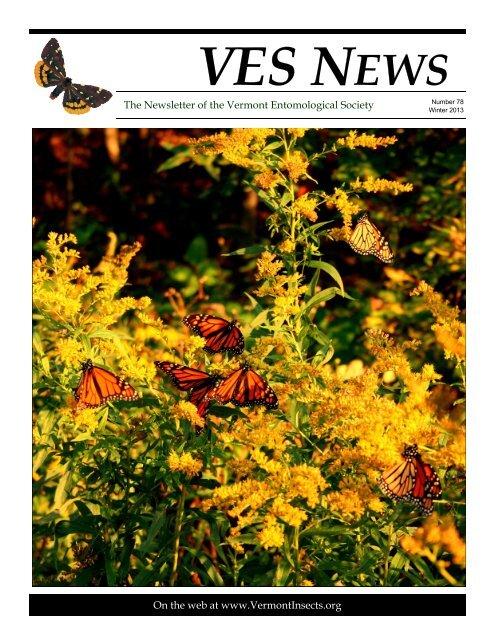 VES News - Winter 2012-2013 - Vermont Entomological Society