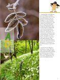 einSteiger 2011 - Page 5