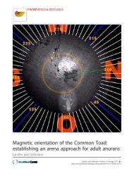 Magnetic orientation of the Common Toad: establishing an arena ...
