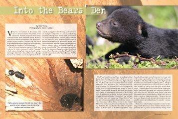 Into the Bear's Den
