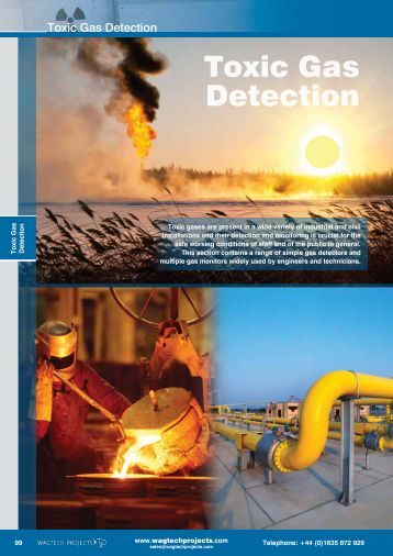 Toxic Gas Detection - Wagtech Projects Ltd