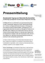 Bundesweite Tagung zum Naturerbe Buchenwälder - Nationalpark ...